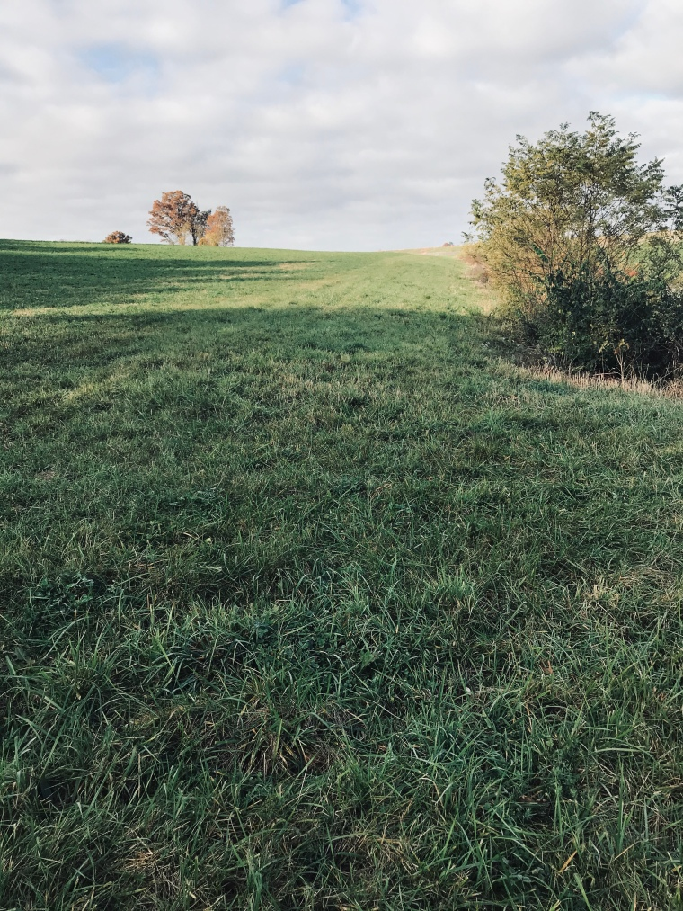 A farmers field 😀