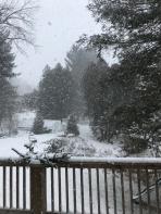 Snowy day <#=3